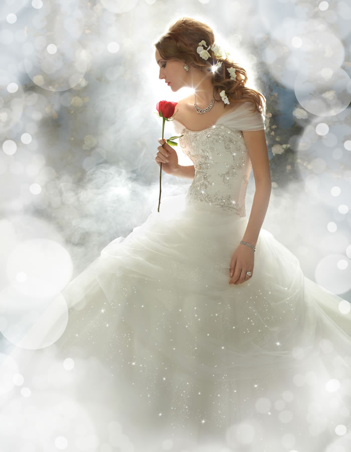 elegant Disney bridal dress